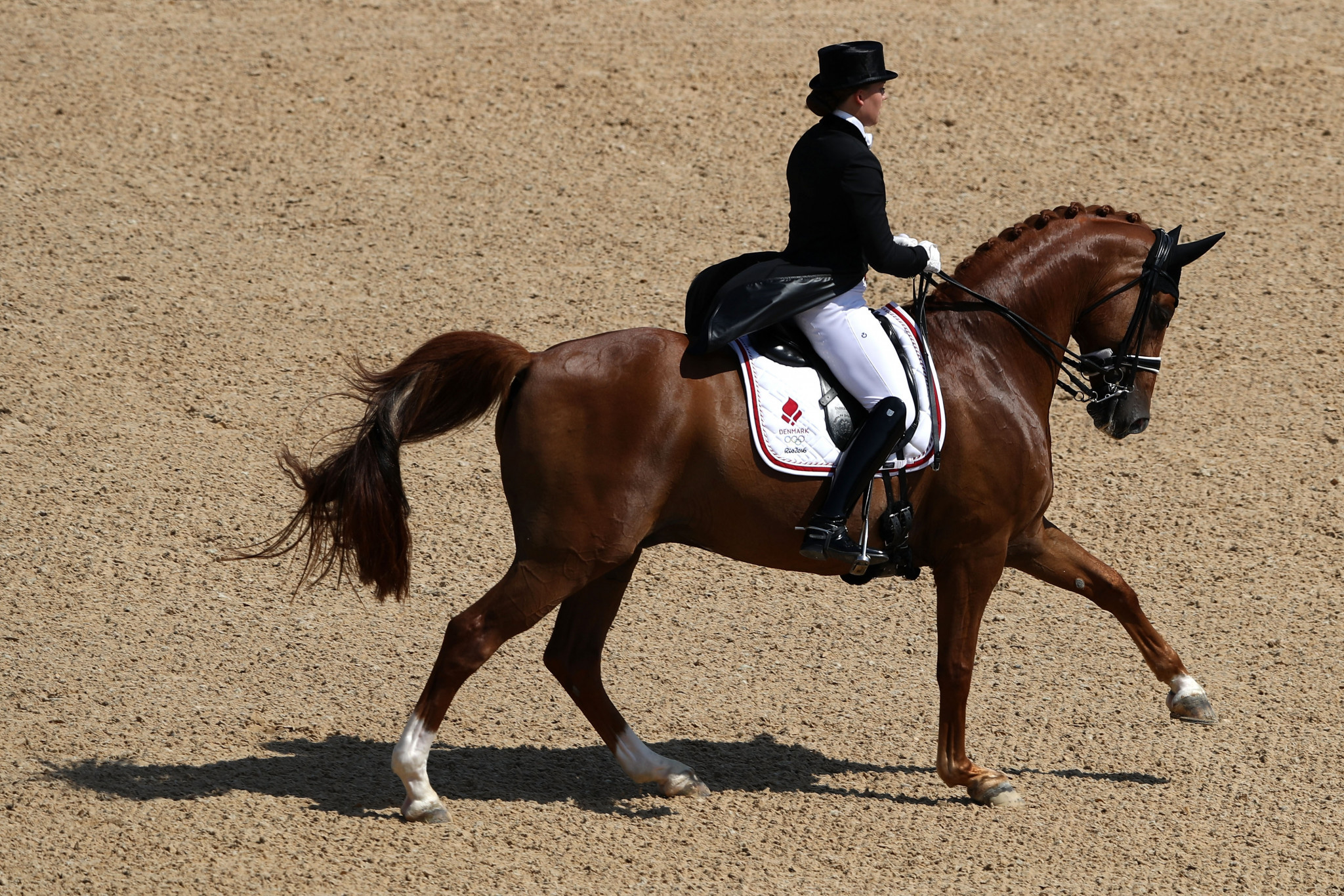 Dufour wins for second successive day at home FEI Dressage World Cup