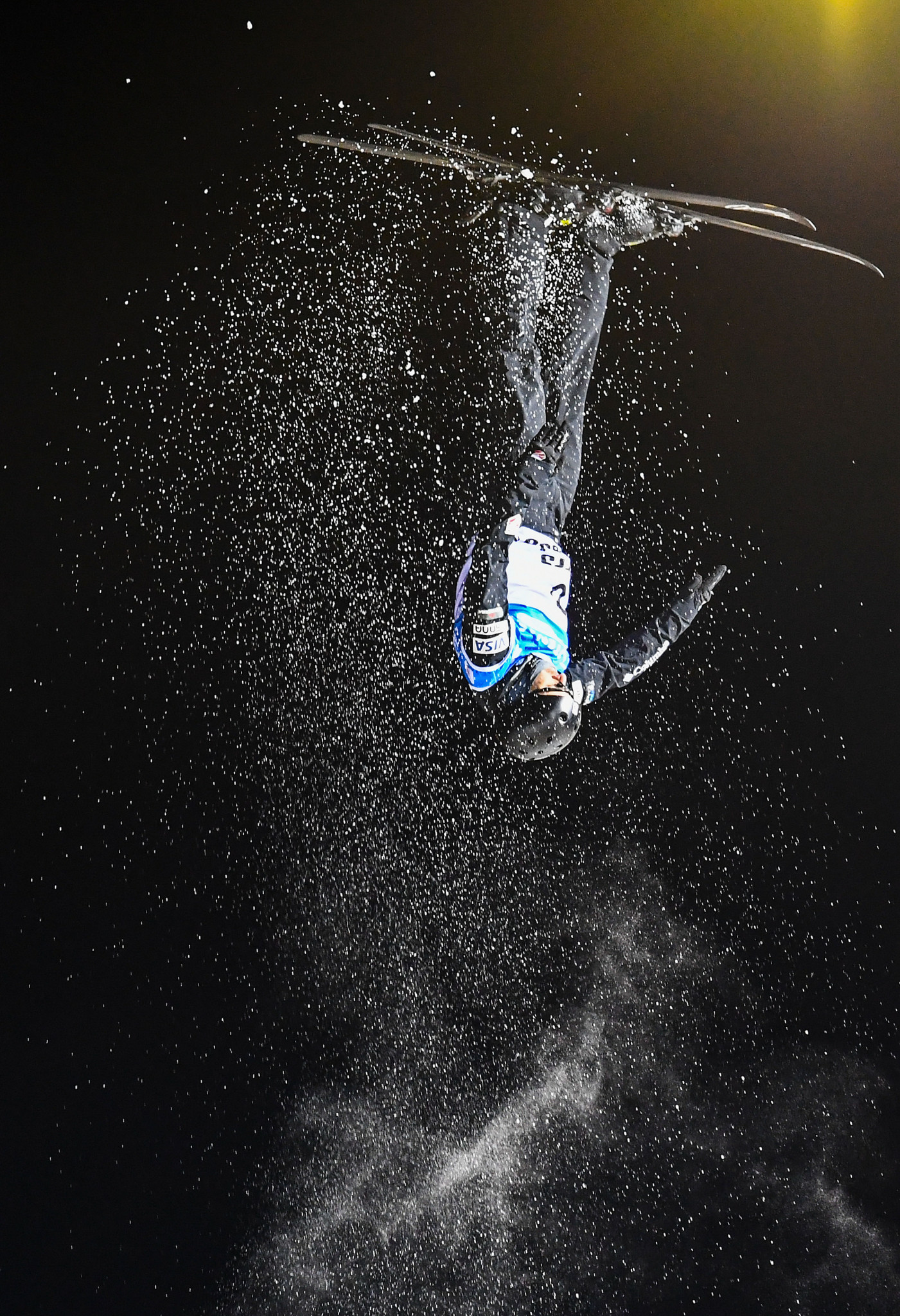 Michael's brother Jon Lillis won the aerials world title this year ©Getty Images