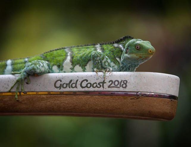 Papua New Guinea prepared for Gold Coast 2018 Queens Baton arrival