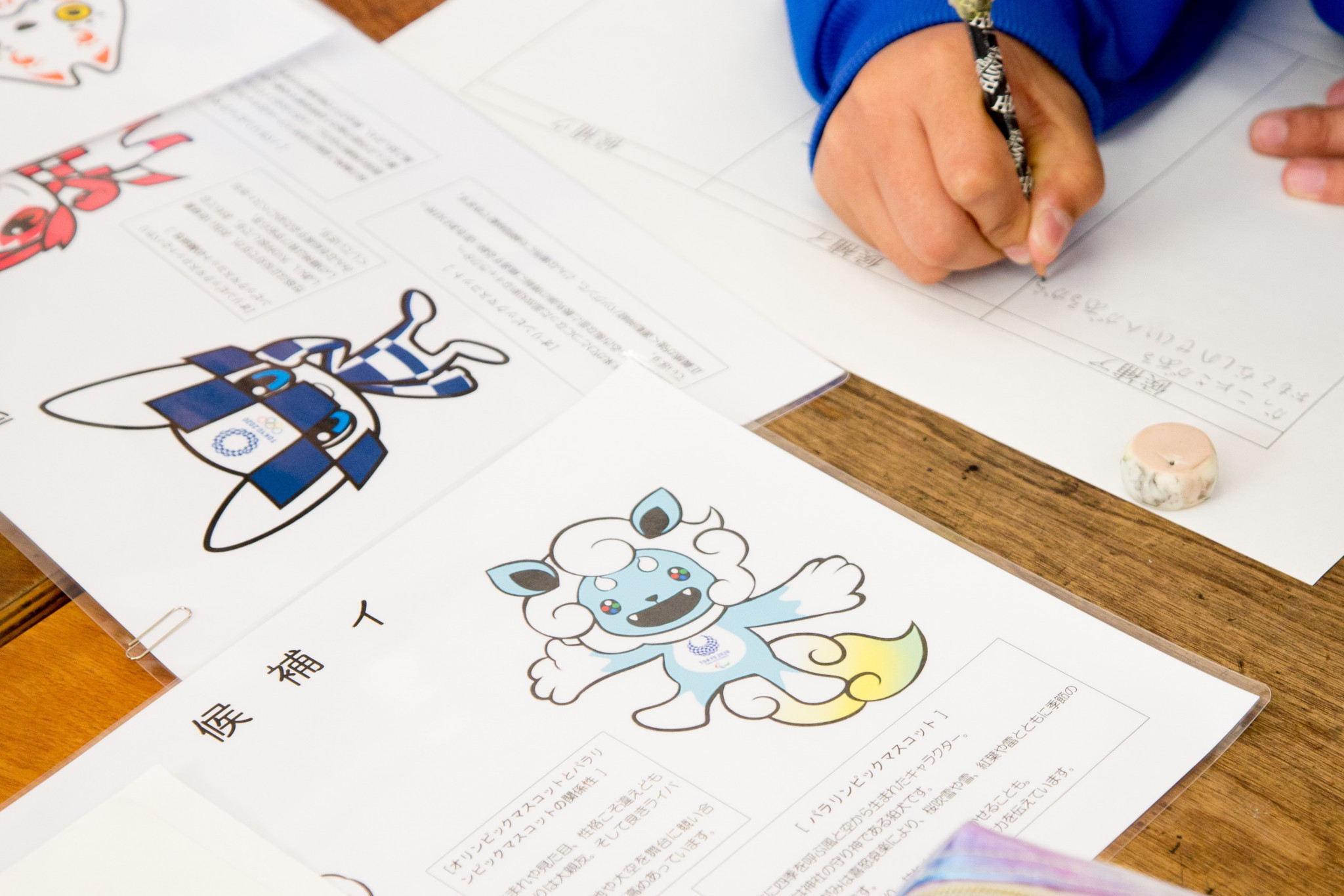 Schools have been given proposed lesson plans to incorporate the mascot selection process ©Tokyo 2020