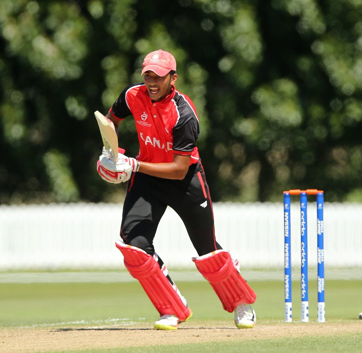 Two plate semi-finalists confirmed at ICC Under-19 Cricket World Cup