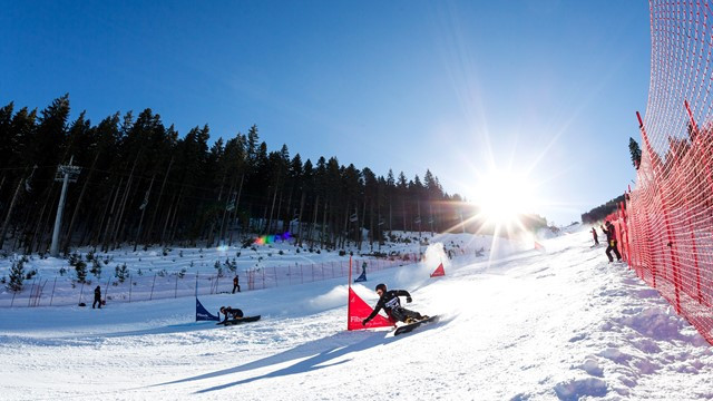 Julia Dujmovits of Austria and and Switzerland's Nevin Galmarini were winners at the FIS Snowboard World Cup parallel giant slalom in Bansko ©FIS